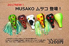 2017517musako